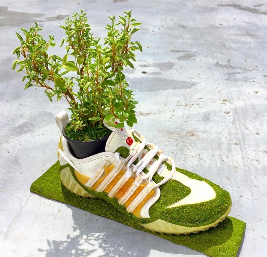 Kosuke Sugimoto - Baskets Jardinières Nike Air Zoom Haven 2000