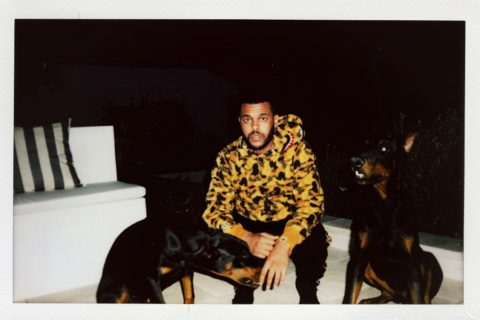 BAPE x The Weeknd