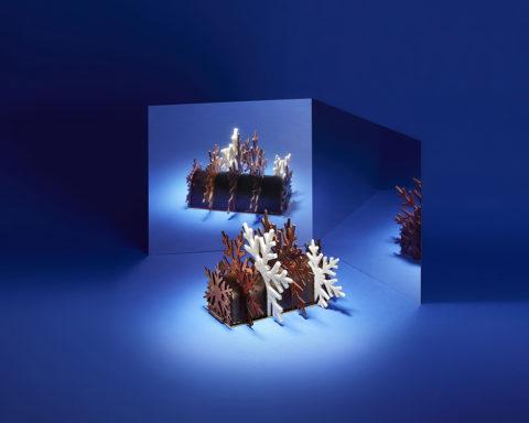 Bûches de Noël 2019 - La Maison du Chocolat