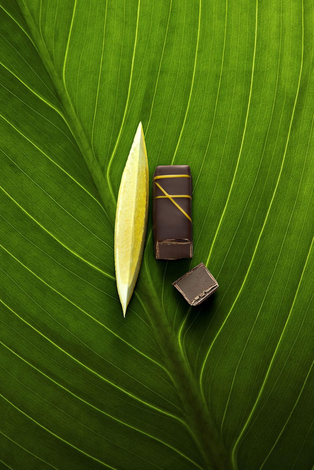 La Maison du Chocolat - Naturellement Fruit Citron